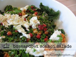 blog bosaardbei scampi salade