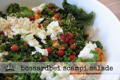 Bosaardbei scampi salade