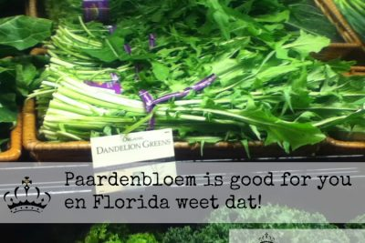 Paardenbloem is good for you…