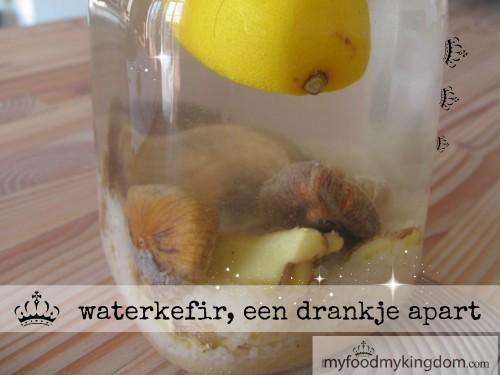 blog waterkefir een drankje apart