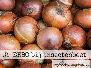 blog ehbo bij insectenbeet