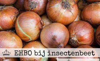 EHBO bij insectenbeet